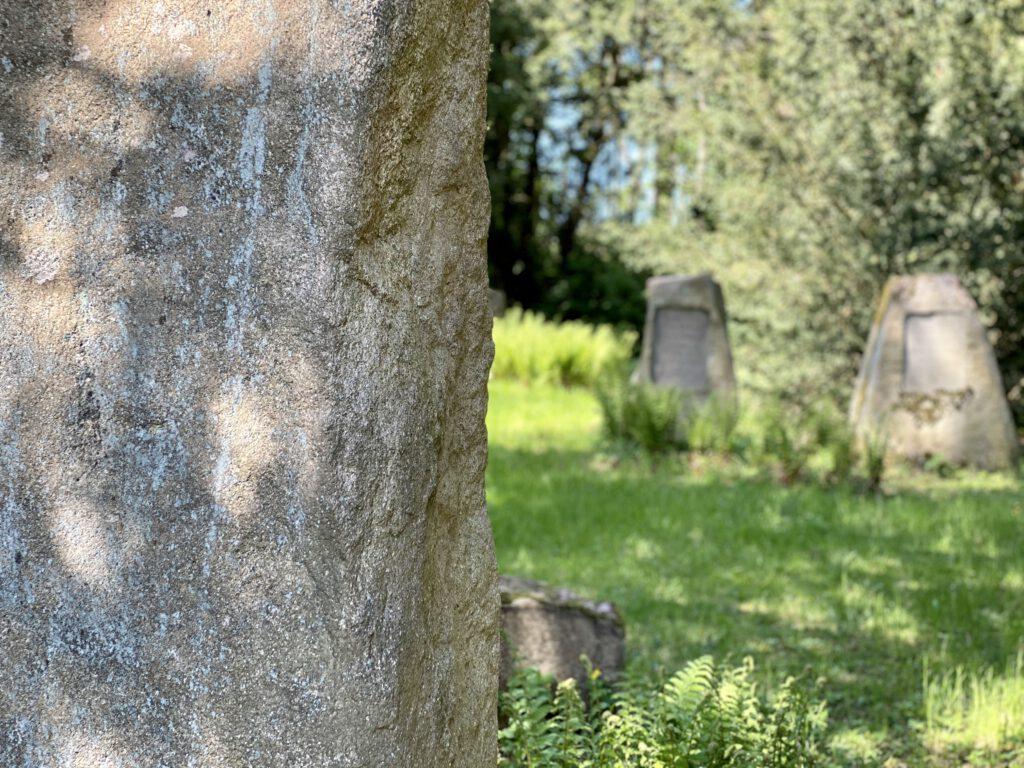 Ein Friedhof ist im Wald versteckt.